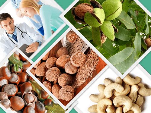 Как лечить геморрой грецкими орехами